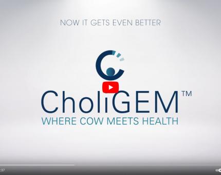 Choligem